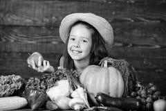 Traditionelle herbstliche Fest Bauernhoft?tigkeiten f?r Kinder M?dchenkinderbauernhofmarkt mit Fallernte Kind feiern das Ernten stockfoto