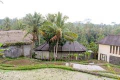 Traditionelle indonesische oder asiatische Häuser mischten mit modernem lizenzfreie stockfotografie