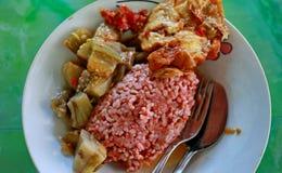 Traditionelle Javanese Nahrung, die roten Reis mit Aubergine und Ei dishe enthält stockbilder