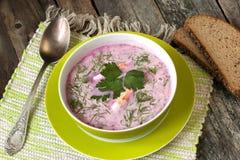 Traditionelle kalte Suppe der roten Rübe mit Gemüse Stockfotografie