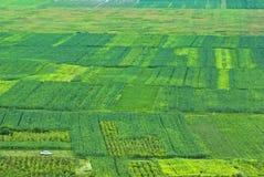 Traditionelle Landwirtschaft Lizenzfreie Stockfotografie