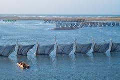 Traditionelle Methode, zum des Aals in Taiwan zu fangen Stockbilder