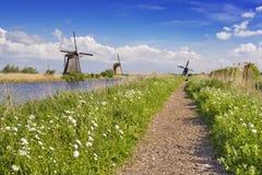 Traditionelle niederländische Windmühlen an einem sonnigen Tag beim Kinderdijk stockfotografie