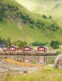 Traditionelle norwegische rote Häuser vor dem hintergrund der grünen Hügel, Lofoten, Norwegen Lizenzfreies Stockfoto