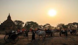 Traditionelle Ochsenkarren bei Sonnenaufgang, Bagan, Mandalay-Region, Myanmar Stockfotografie