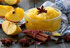 Traditionelle organische, gesunde Apfelsauce stockbilder
