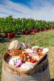 Traditionelle rumänische Lebensmittelplatte mit Wein und Weinberge im Hintergrund Stockbilder