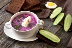 Traditionelle russische kalte Suppe gemacht von den roten Rüben, von den Gurken und von den Kräutern mit Ei und Sauerrahm Stockfotos