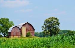 Traditionelle Scheune und Ackerland Stockbilder