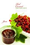 Traditionelle selbst gemachte Marmelade der roten Johannisbeere Stockfoto