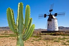Traditionelle Windmühle beim Fuertaventura Lizenzfreie Stockbilder