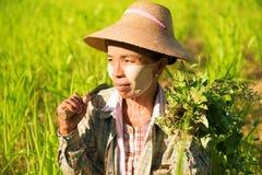 Traditioneller asiatischer weiblicher Landwirt Lizenzfreies Stockfoto