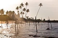 Traditioneller Fischer Sri Lankan auf Stock im Indischen Ozean Stockfotografie