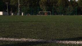 Traditioneller Fußball auf Spielplatz des grünen Grases stock video footage