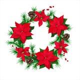 Traditioneller grüner Weihnachtstannenkranz mit pointsettia Blumen, Kegeln und roten Beeren lokalisierte vektor abbildung