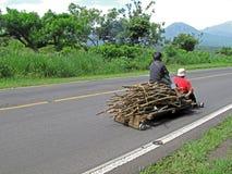Traditioneller Holztransport in El Salvador lizenzfreie stockfotos