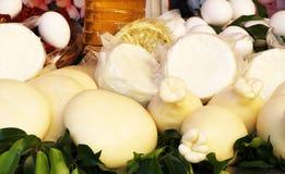 Traditioneller Käse, Ricotta, Caciotta Stockbild