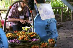 Traditioneller Nahrungsmittelströmungsabriß lizenzfreie stockbilder