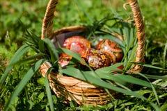 Traditioneller Ostern-Korb Lizenzfreie Stockbilder