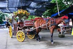 Traditioneller Pferden-Wagen Lizenzfreies Stockbild