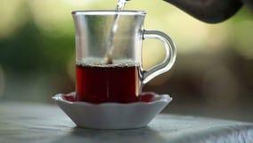 Traditioneller türkischer Tee und Teekanne, die Türkei stock video footage