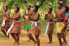 Traditioneller Tanz in Madagaskar, Afrika lizenzfreies stockbild