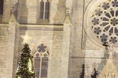 2014 - Traditioneller Weihnachtsbaum am Friedensquadrat vor Heiligem Ludmila Church Lizenzfreie Stockfotos