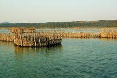 Traditionelles Fischen an Kosi-Bucht, Südafrika stockbild