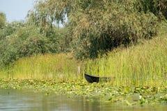 Traditionelles Floss nannte Lotca das Fischerboot der fishermans Stockbild