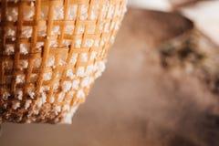 Traditionelles gekochtes Steinsalz, das Industrie macht Stockfotografie