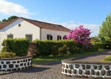 Traditionelles Haus in Pico Island, Azoren stockfoto