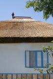 Traditionelles Haus vom Donau-Dreieck Lizenzfreies Stockbild