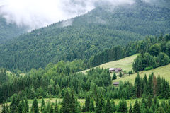 Traditionelles hölzernes Gebirgshaus auf grünem Feld Stockbilder