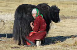 Traditionelles mongolisches Leben 3 Stockfoto