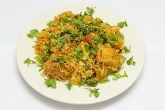 Traditionelles pakistanisches Huhn Biryani lokalisiert auf weißem Hintergrund Lizenzfreie Stockfotos