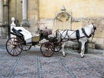 Traditionelles Pferd und Warenkorb in Cordoba, Spanien Lizenzfreies Stockbild