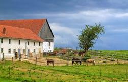 Traditionelles rotes mit Ziegeln gedecktes Dachgutshaus mit Pferden im Bayern, GE Lizenzfreies Stockbild