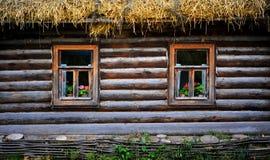 Traditionelles russisches Häuschen mit Blumen, Tula, Russland Stockfotos