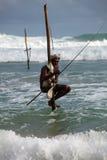 Traditionelles sri lankan Stelzefischer lizenzfreies stockfoto