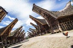 Traditionelles Tana Toraja-Dorf Lizenzfreie Stockfotografie
