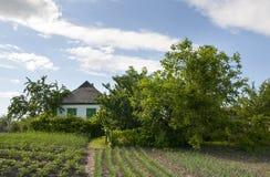 Traditionellt byhus med en trädgård Royaltyfria Bilder