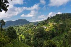 Traditionellt bylandskap i Myanmar royaltyfri fotografi