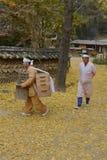 Traditionellt etniskt folk folk på Namsangol den traditionella folk byn, Seoul, Sydkorea - NOVEMBER 2013 Arkivbild
