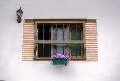 Traditionellt fönster med en växt och ett gammalt ljus arkivbild