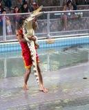 Traditionellt för den Thailand showen av krokodiler Royaltyfri Fotografi