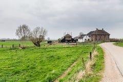 Traditionellt holländskt lantbrukarhem nära Maurik i Neteherlandsen Arkivfoton