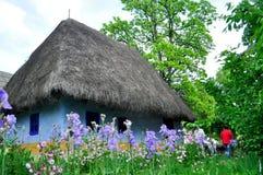 Traditionellt hus Royaltyfri Fotografi
