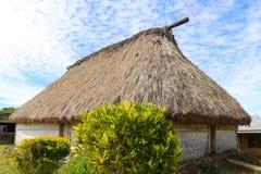 Traditionellt hus i en by i Fiji, Viti Levu, Fiji arkivbilder