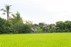 Traditionellt hus på bygden i Laos Royaltyfria Bilder