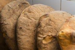 Traditionellt italienskt bröd Royaltyfri Fotografi